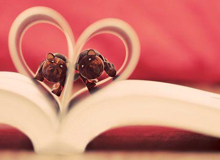 经典爱情短语 有一种感情叫无缘